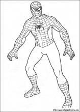 Disegni Da Colorare Uomo Ragno.Disegni Di Spiderman Da Colorare