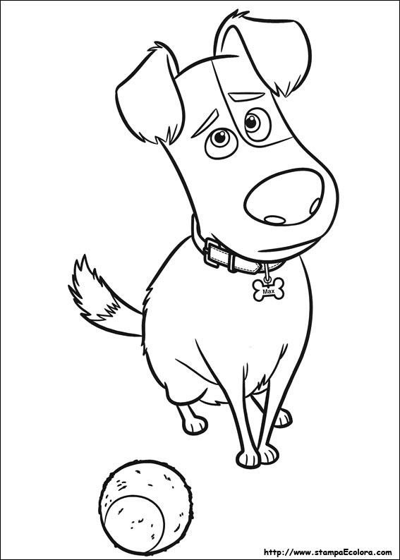 Disegni De Pets Vita Da Animali